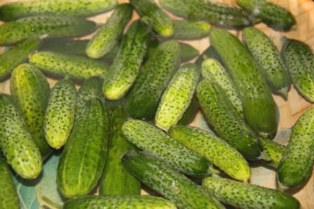 Заготовки на зиму - маринованные огурцы - бабушкин рецепт