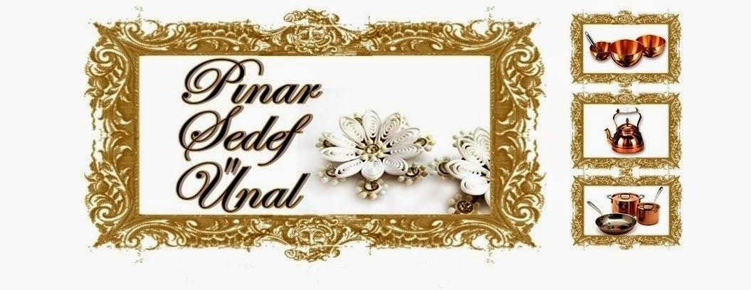 PINAR SEDEF ÜNAL