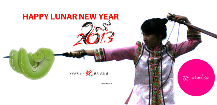Happy Lunar New Year 2013