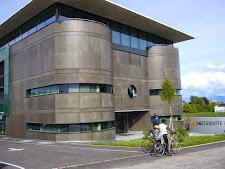 Nach Euro-Fall: Aus Angst vor Fensterstürzen riegeln Banken Fenster und Zugänge zum Dach ab
