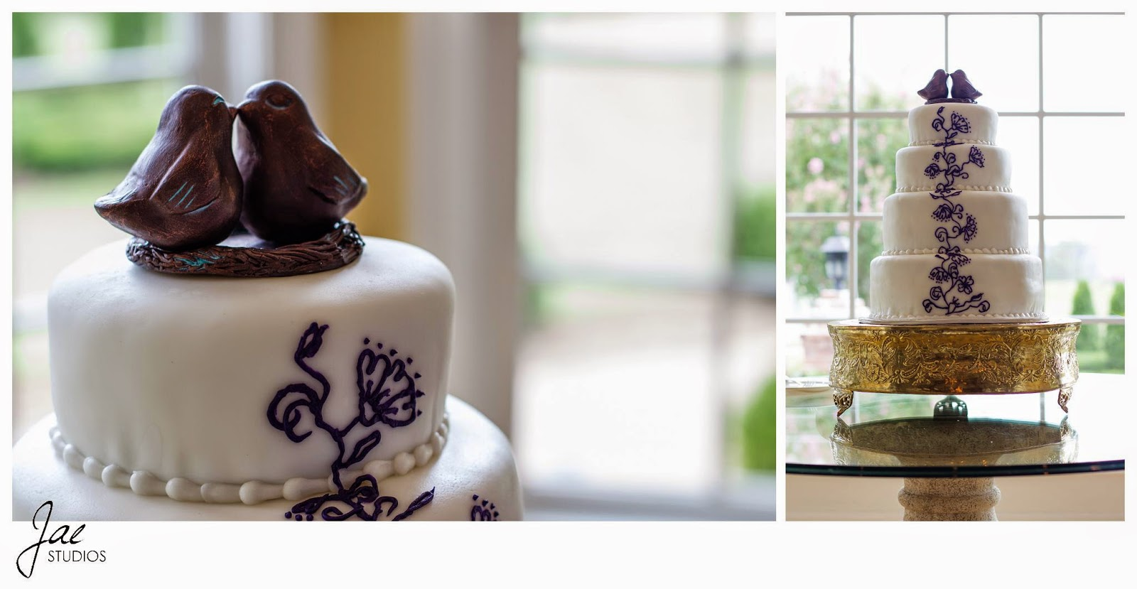 Jonathan and Julie, Bird cage, West Manor Estate, Wedding, Lynchburg, Virginia, Jae Studios, chocolate, birds, cake, gold, white, pearls, blue flowers, window