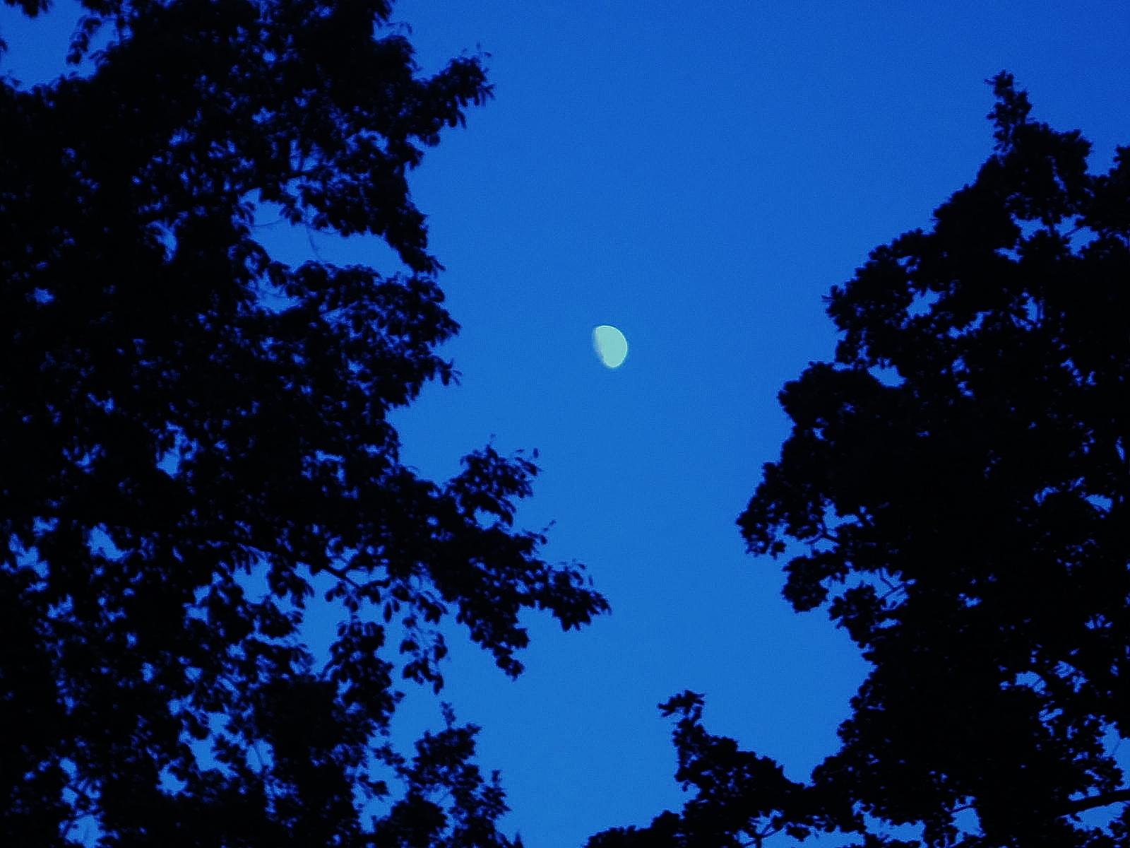 http://3.bp.blogspot.com/-7CAADR239C4/UDsocU290-I/AAAAAAAAG5M/KIEZBjKjfWE/s1600/Sunday+August+26,2012+013.JPG