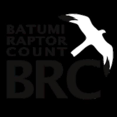 Batumi Raptor Count
