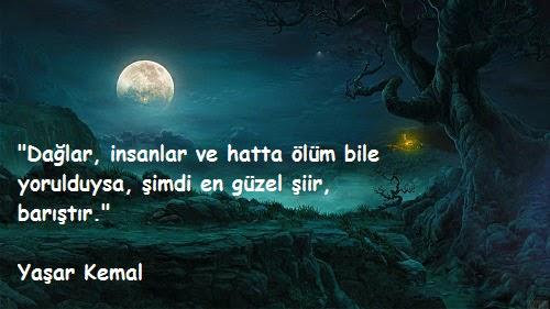 En Güzel Yaşar Kemal Sözleri