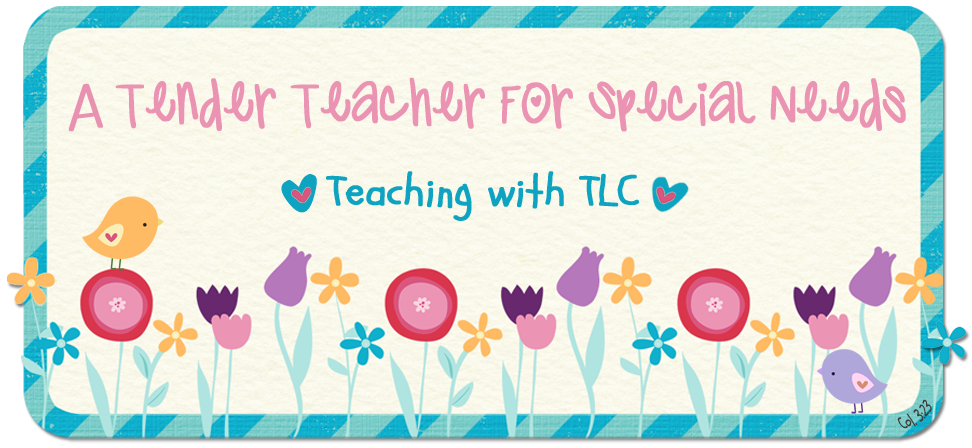 A Tender Teacher for Special Needs