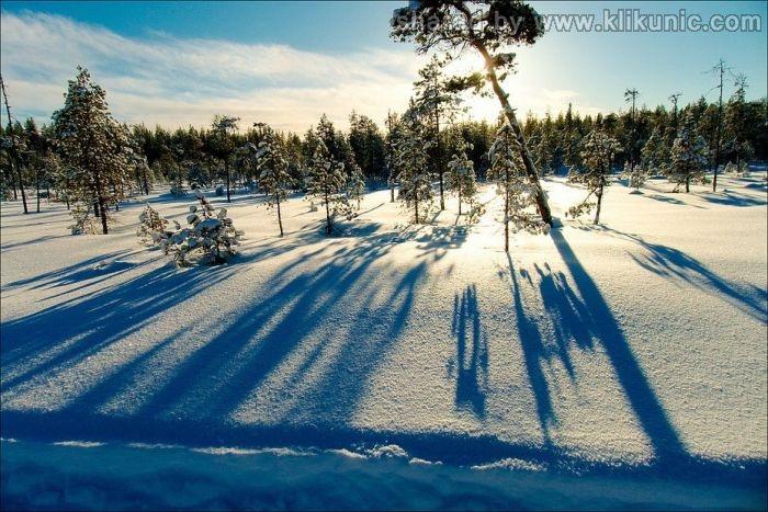 http://3.bp.blogspot.com/-7CzusbNVMaU/TXNbIjYnXKI/AAAAAAAAP9k/5K-_HpVVGgU/s1600/winter_11.jpg