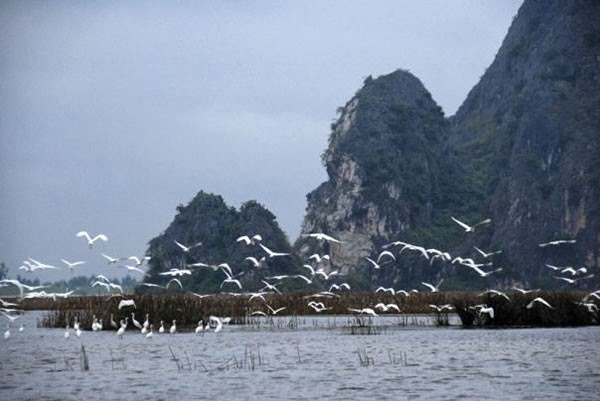 most beautiful lagoons in Vietnam, Tam Giang lagoon, O Loan lagoon