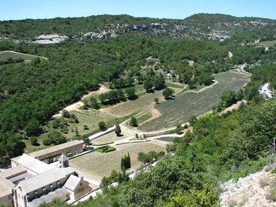 Abbaye de Senanque and the Lavender Fields