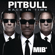 PitbullBack In Time (Theme from Men In Black 3) (Produced by Marc Kinchen .