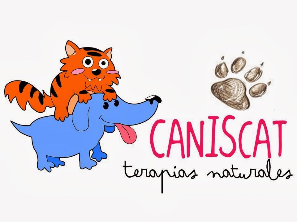 Caniscat