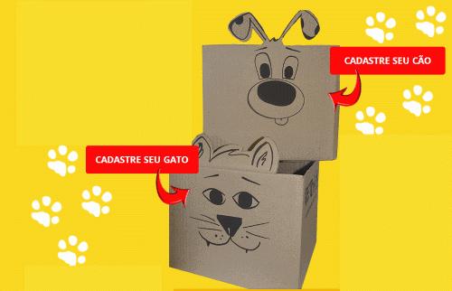 caixa de brindes petbox grátis
