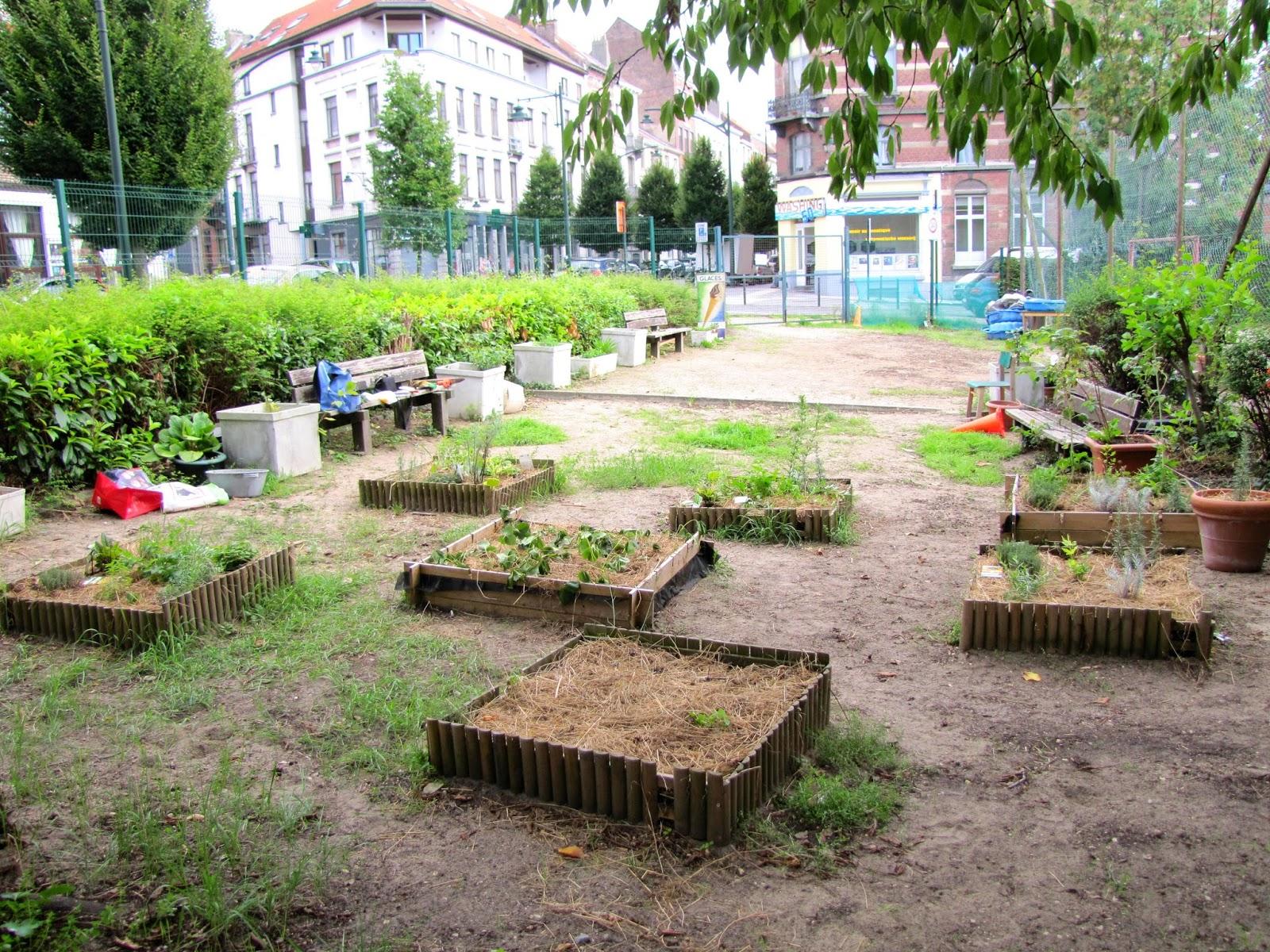 Association de parents adolphe max for Jardin potager 2015