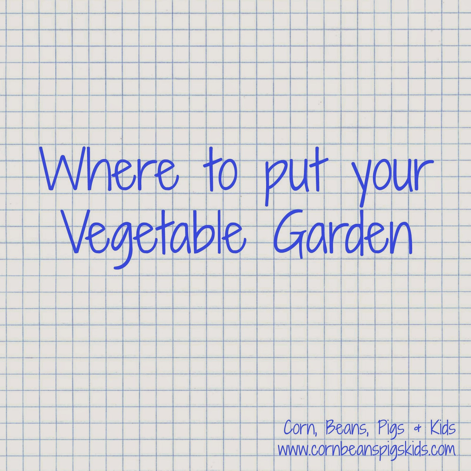 Where to put your Vegetable Garden