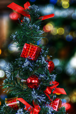 """""""Merry Christmas Tree"""" captured by Richard Deane"""