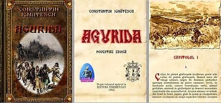 Constantin Ignatescu - Agurida