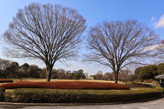 Beautiful park in the beginning of Spring at Imperial Palace East Garden in Tokyo, Japan