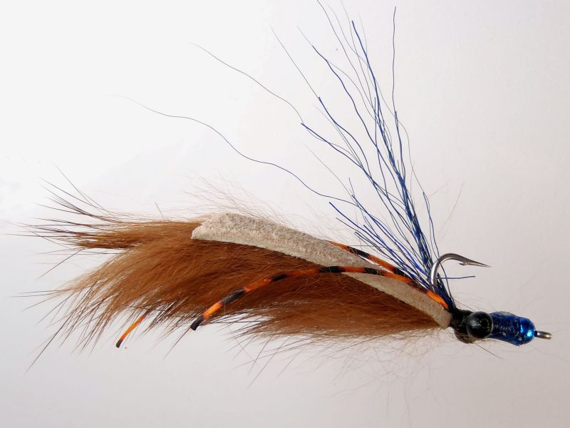 Will Rice's Blue Monkey carp fly