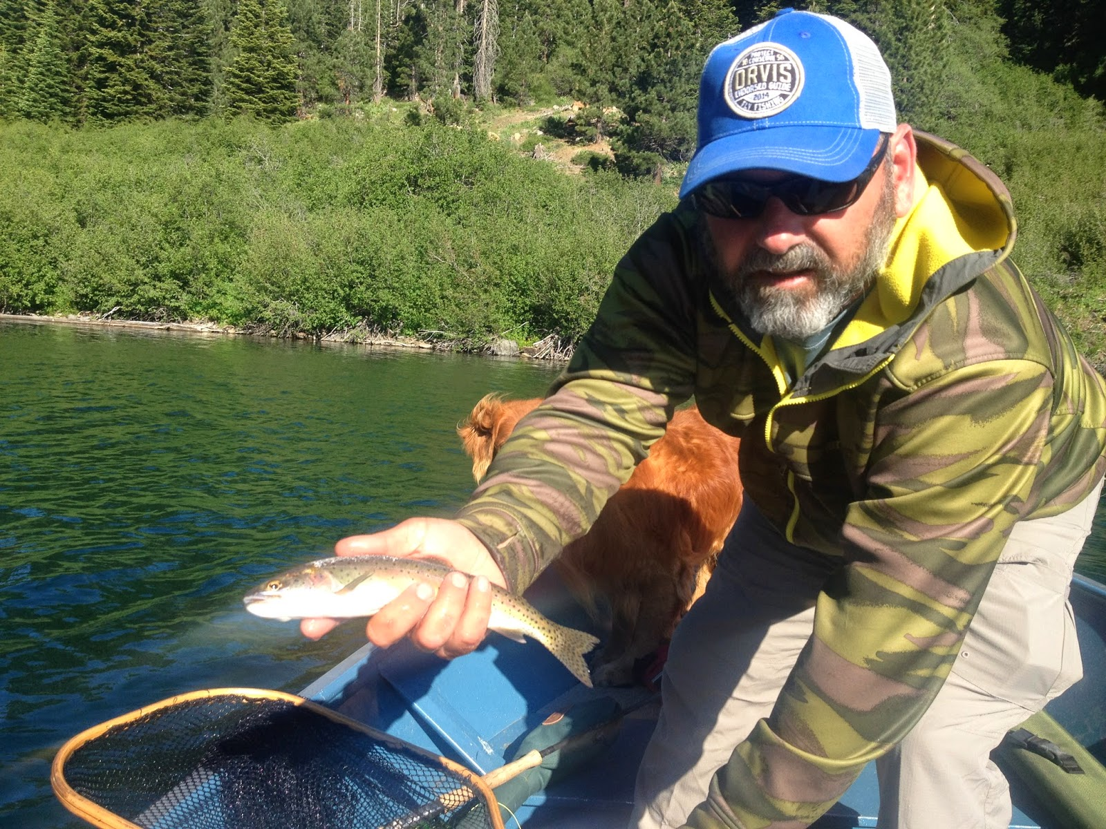 Northern sierra fly fishing independence lake 6 24 14 for Sierra fly fishing