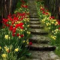 Η Οδός της τέλειας αγάπης, αυτογνωσία, Θεολογία, Κινεζική Φιλοσοφία, αγάπη, ταο