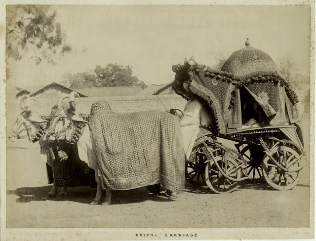 c.1860%2527s+PHOTO+INDIA+BRIDAL+CARRIAGE
