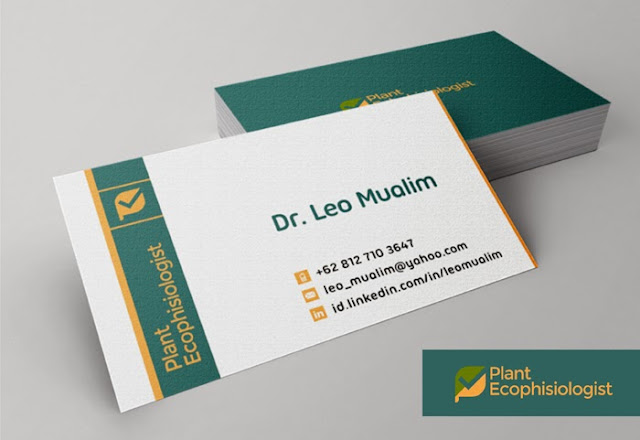 business cards, business credit card, credit card, free business card, business card template, business card templates, design business card