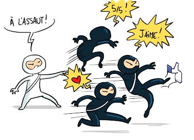 Ninjas du web