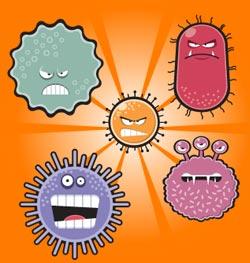 Evil fat hatin' microbes must die!