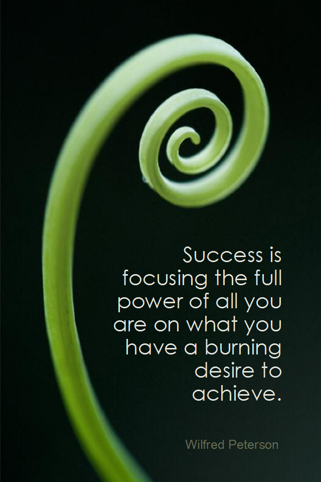 visual quote - image quotation for SUCCESS - Success is focusing the full power of all you are on what you have a burning desire to achieve. - Wilfred Peterson