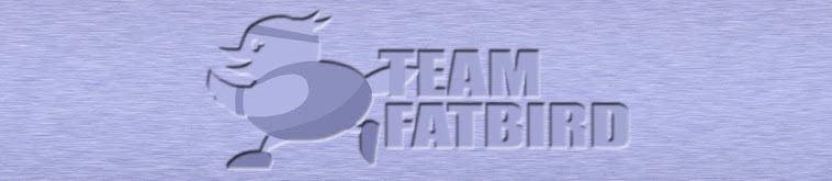 Team FatBird | Marathon Pacing, Training and Group Running