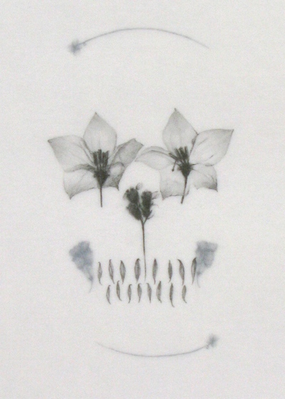 Mercedes Baliarda: Skull