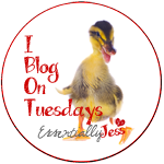 I Blog on Tuesdays