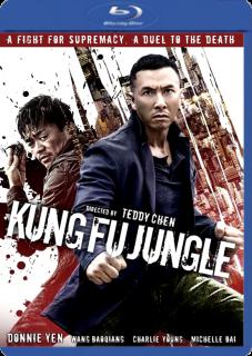 Asesino Kung Fu (2014) DVDRip Latino