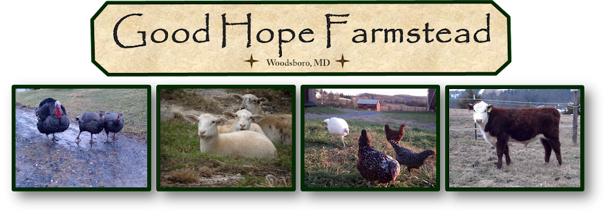 Good Hope Farmstead