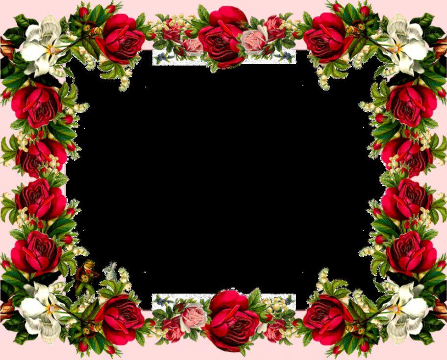 Hd Flower Photo Frames | Best image Background