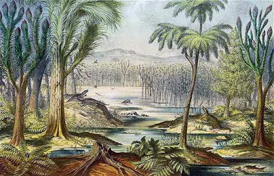 Hutan Hujan Carboniferous Lenyap