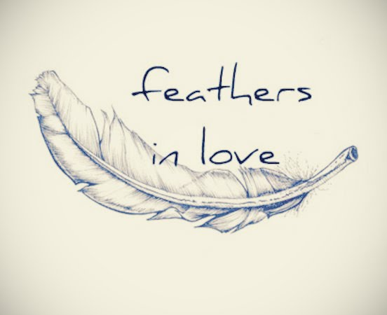 Feathers in love