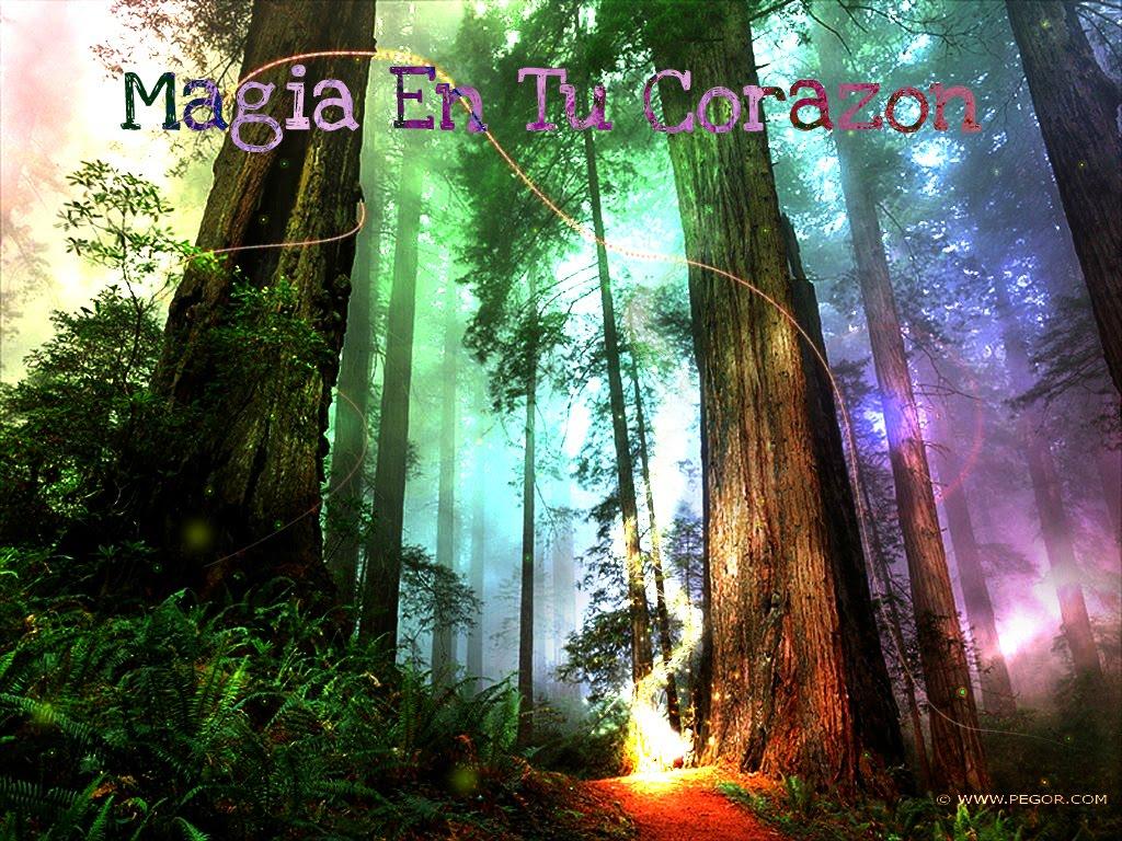 .:Magia en tu Corazon:.