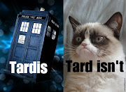 Grumpy cat meets Dr Who possibly the best/worst pun of all time/space