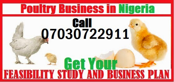 A BUSINESS PLAN ON THE ESTABLISHMENT OF POULTRY FARM FEASIBILITY - Agriculture business plan template