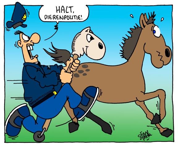 Cartoon Van De Dag Paarden Op De A2 Bij Eindhoven