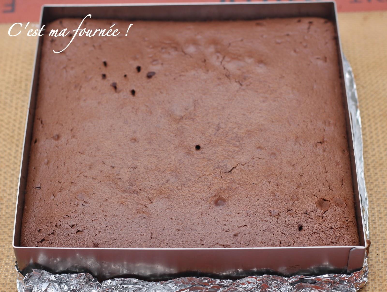 C 39 est ma fourn e le g teau au chocolat de cyril lignac - Plaque a genoise en silicone ...