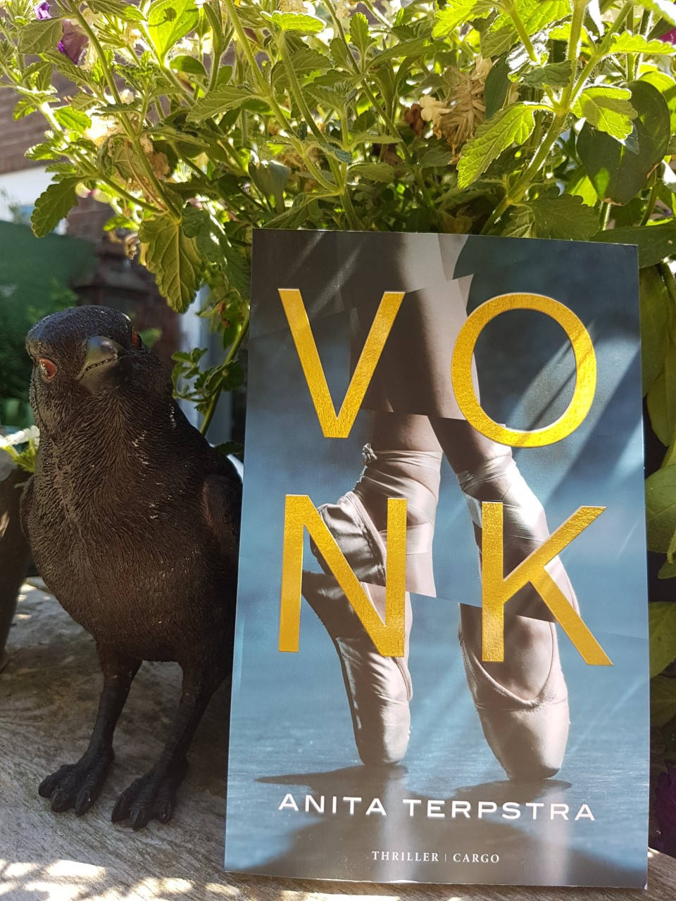 Winactie VIJF x Vonk