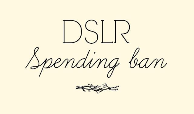 spending ban logo