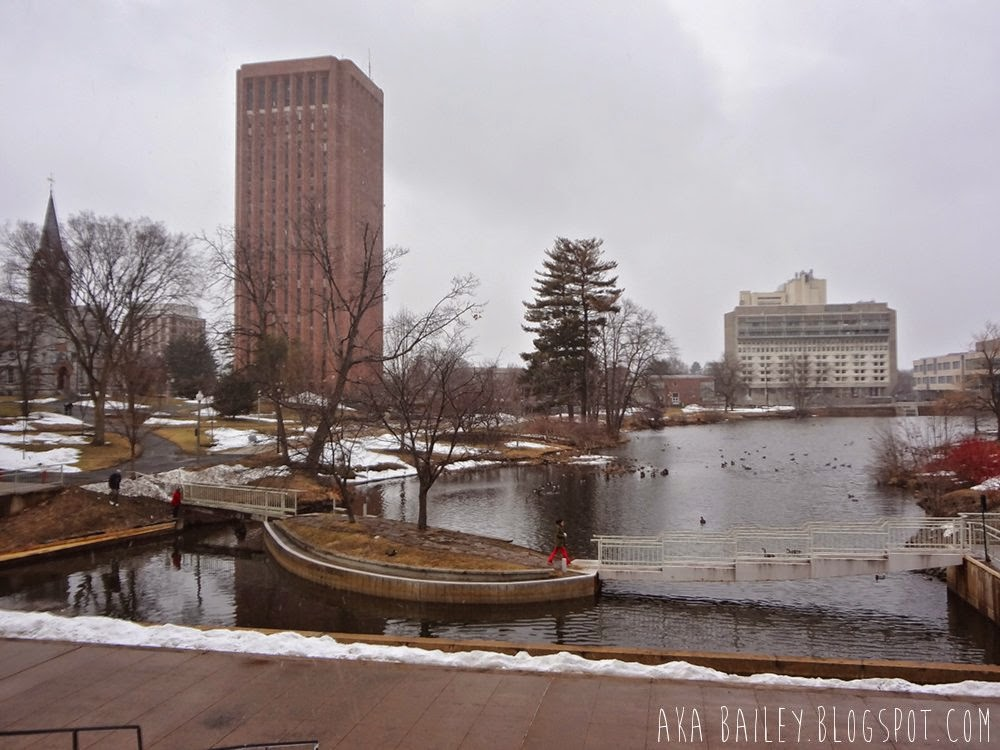 UMass Amherst campus pond and view of the library and student union
