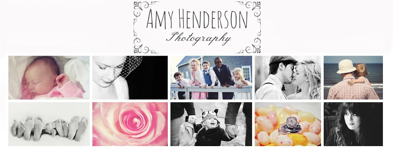 These Photographs by Amy