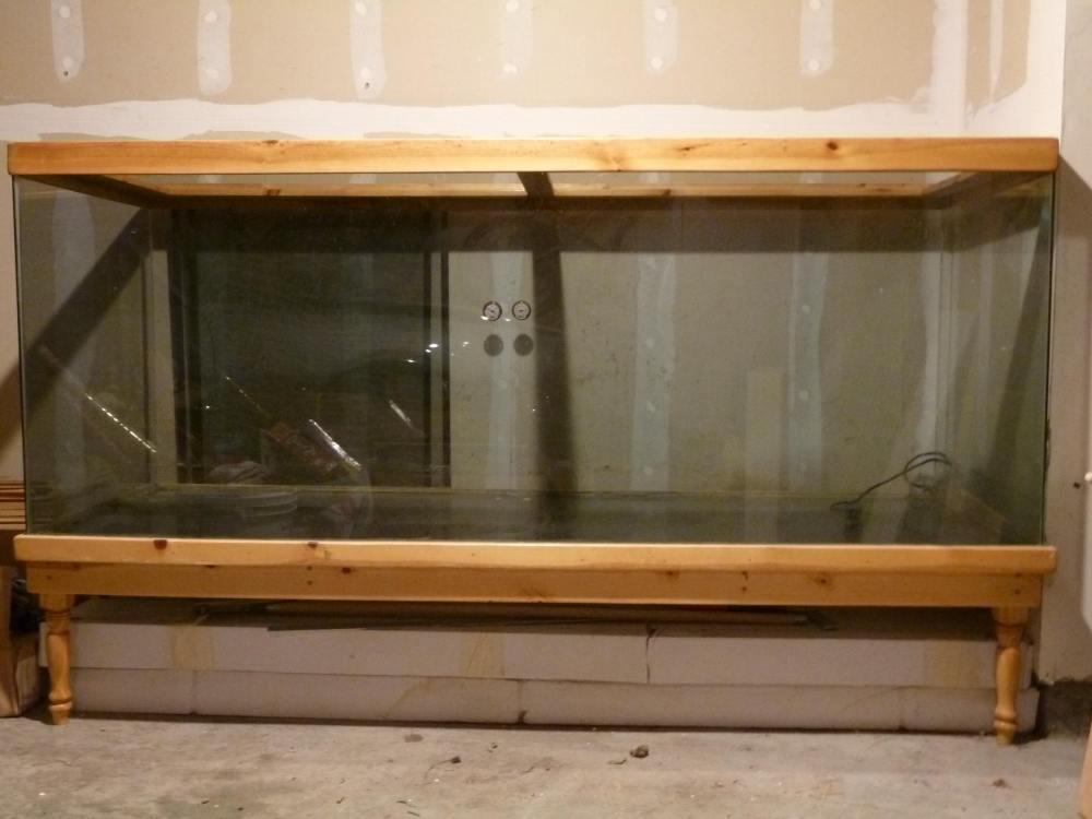Giant Aquariums 370 Gallon Custom Made Reptile Terrarium Tank