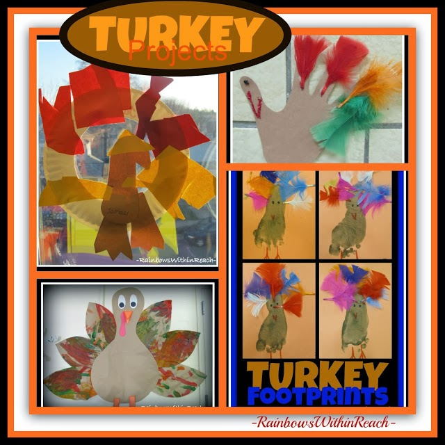 Turkey Projects