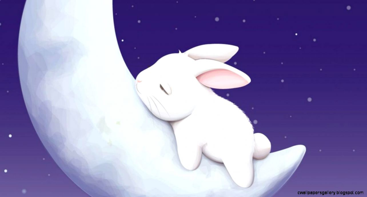 Cute Animated Bunny Wallpapers Wallpapers Gallery