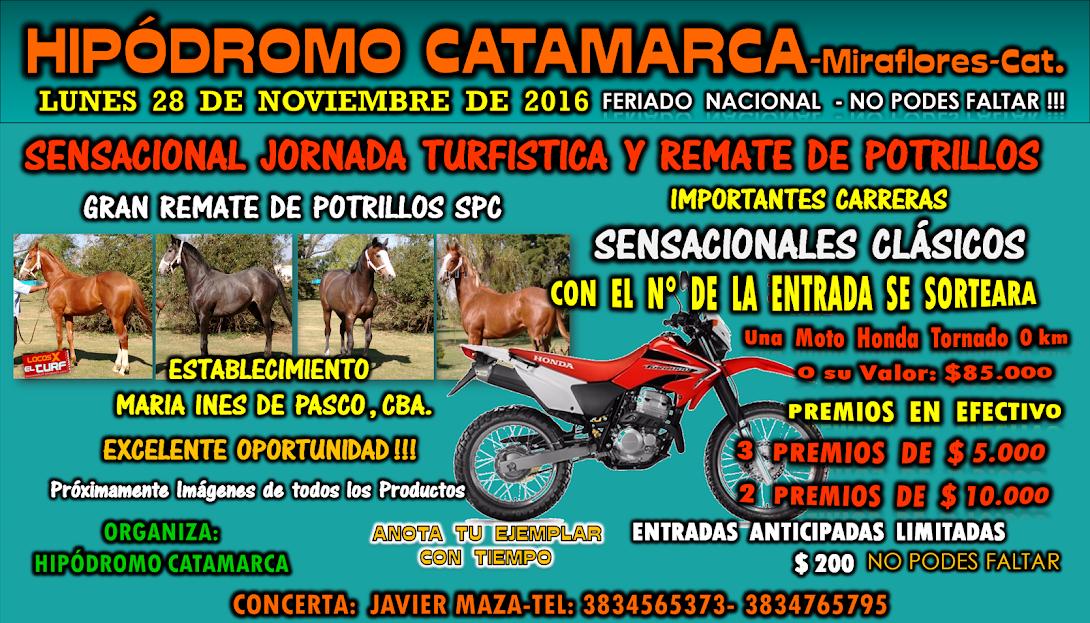 28-11-16-HIP. CATAMARCA