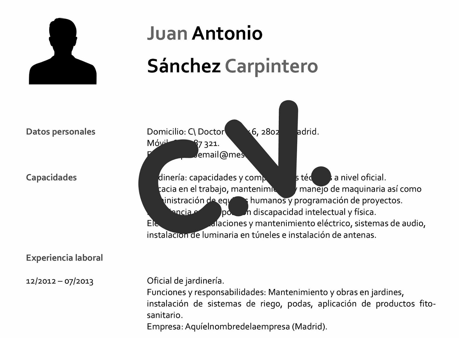ASPA-BLOG: El Currículum Vitae